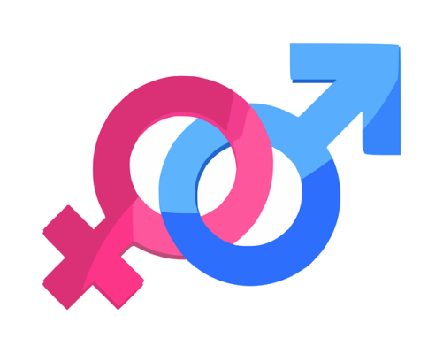 Representation Equilibree Des Femmes Et Des Hommes Cse Happyce Fr